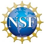 nsf logo 2
